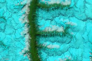 The Operational Land Imager (OLI) on Landsat 8 acquired this false-color image of valleys and snow-covered mountain ranges in southeastern Tibet on August 4, 2014.
